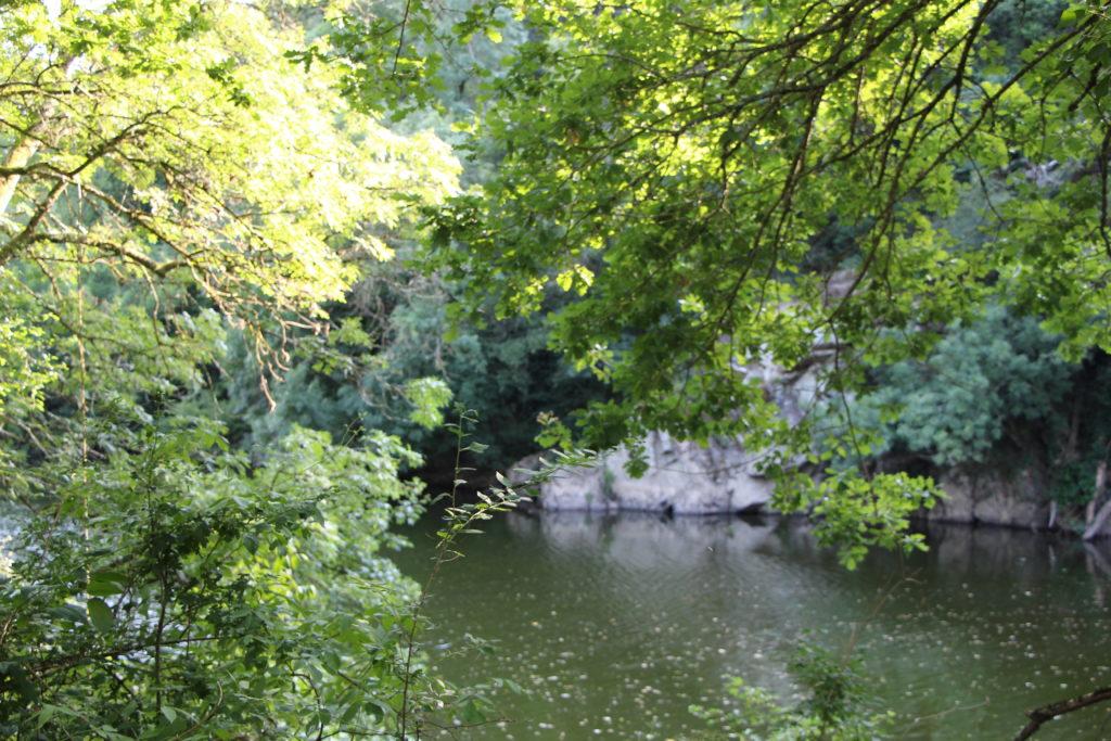 La rivière Sèvre Nantaise à proximité de Nantes